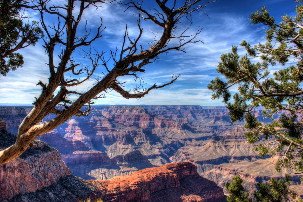 udsigt grand canyon