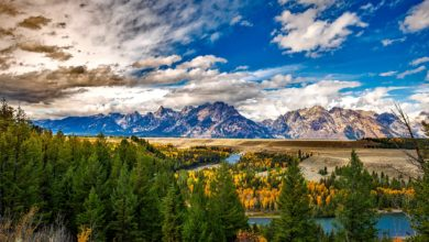 wyoming teton