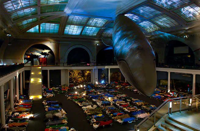 nat på museum